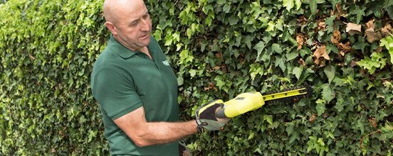 Fantastic gardener maintaining a garden in Melbourne